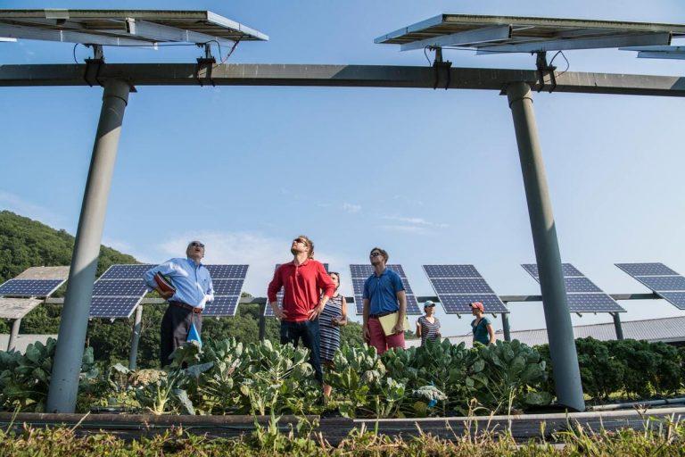 nettoyer panneau solaire photovoltaique